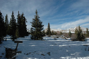 rivermossreiki-colorado-mtns-station